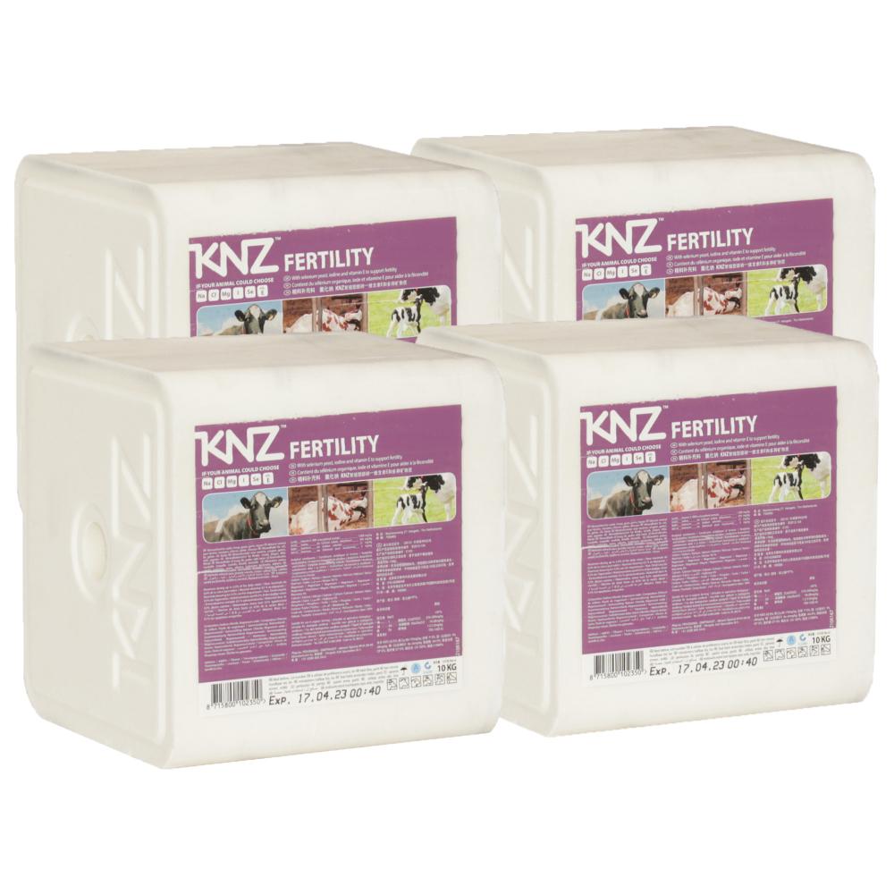 KNZ 4 Lecksteine je 10kg Mineralleckstein Fertility