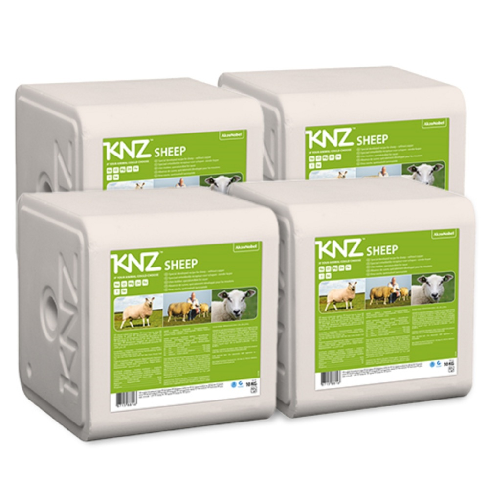 KNZ Mineralleckstein Salzleckstein Schafe